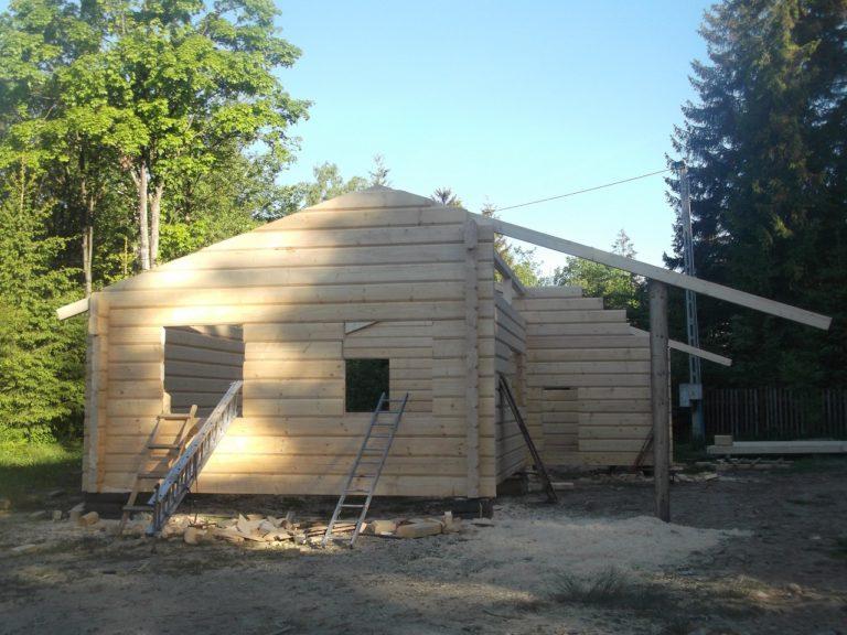 konstrukcja domu zplazow wlesie